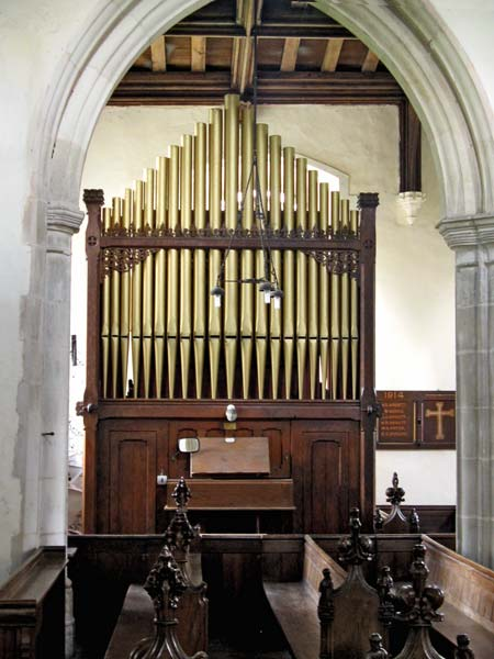 Holditch Organ